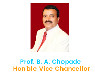 Honorable Vice-Chancellor